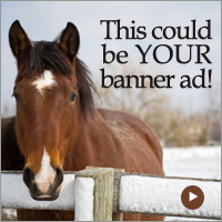 Sample Banner Ad