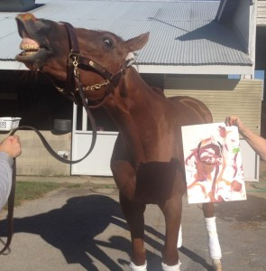 Wise Dan and his Moneigh source Moneighs for Rerun Facebook